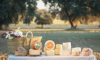 Descubre nuestra gama de quesos