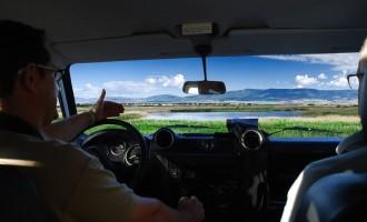 Visita en vehículo a Las Tablas de Daimiel